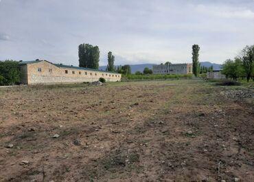Недвижимость - Шамкир: Продам 12 соток Строительство от собственника