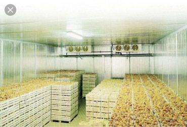 Продаю бизнес по хранению овощей и в Бишкек