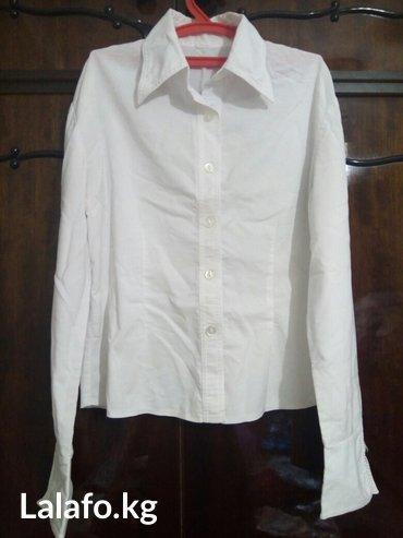 Продаю офисную рубашку, размер в Лебединовка