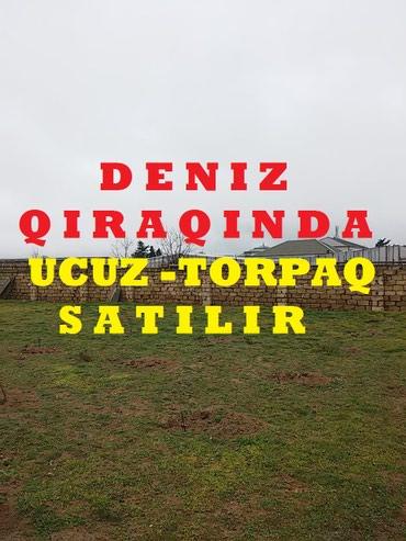 şiş qadın ətəkləri - Azərbaycan: Satış 10 sot