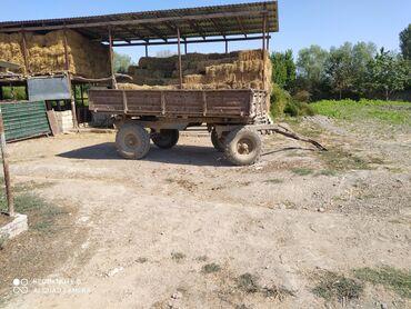 33 elan   NƏQLIYYAT: T 28 traktör 2 eded lapet ot biçen ot yiğan mala hamsi tam işlek