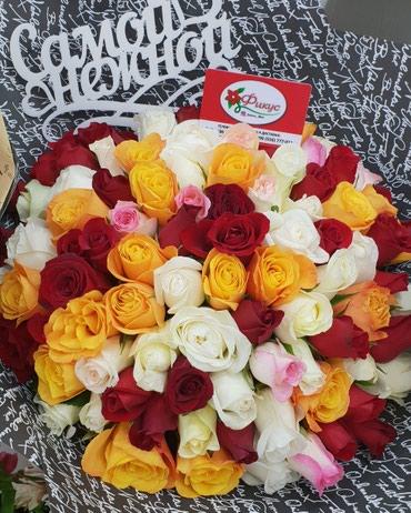 Розы Голландские и Кения при большом количестве по оптовым ценам