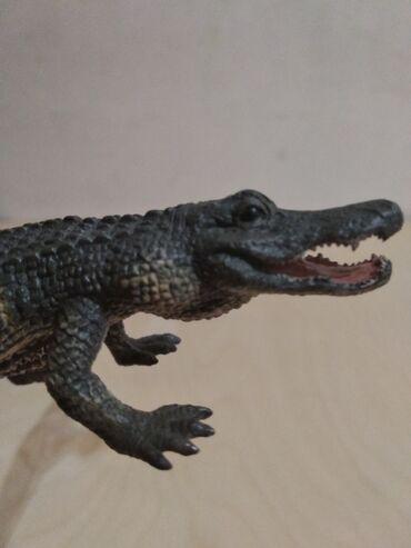 Аллигатор американский (collecta)