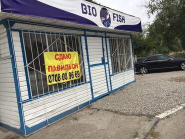 радуга магазин в Кыргызстан: Сдаю павильон 18 квадратовв аренду на долгий срок  Водаканализаци
