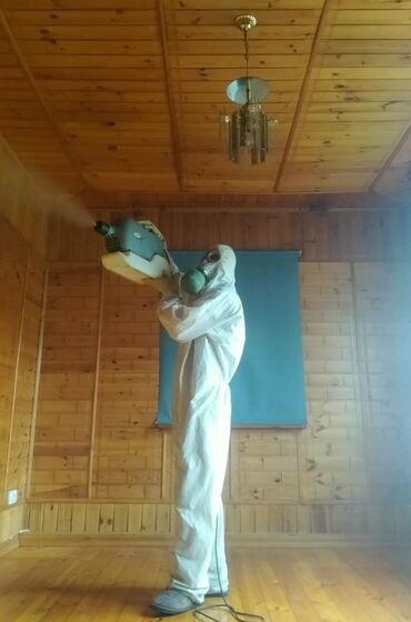уничтожения таракан блох клопов в Кыргызстан: Дезинфекция, дезинсекция   Клопы, Блохи, Тараканы   Офисы, Квартиры, Дома, Кафе, магазины, Подъезды