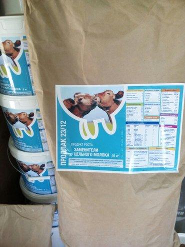 ЗЦМ сухое молоко для телят поросят в Бишкек
