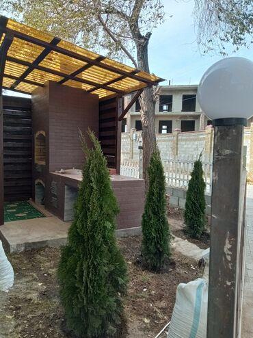 пансионат фонтан в Кыргызстан: Продаю коттедж в пансионате Радуга-вест. Две комнаты 75кв. Террасса