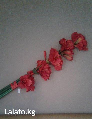 цветы для украшения в Кыргызстан: Цветы муляж-Композиция из 5ти больших цветов Амариллиса. Украшение на