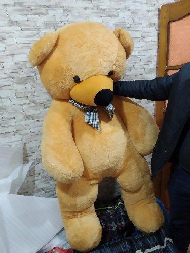ayi kostyum - Azərbaycan: Ayı satılır