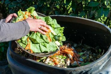 Вывоз пищевых отходовпомои,выжимки, хлеб, кондитерские изделия С