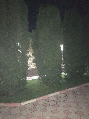 редми нот 5 про цена в бишкеке in Кыргызстан | ДРУГИЕ МОБИЛЬНЫЕ ТЕЛЕФОНЫ: Продаю ели 5-6мцена договорная, звонить