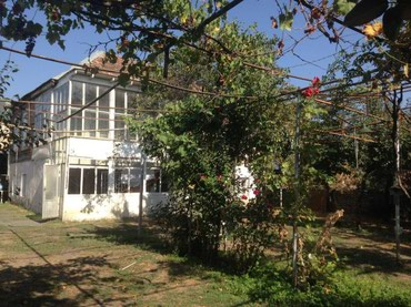 Zaqatala şəhərində Zaqatalada 12sot heyat evi satilir
