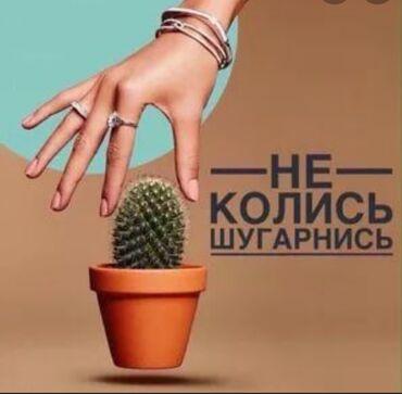 баня с бассейном бишкек в Кыргызстан: Косметолог | Шугаринг | С выездом на дом