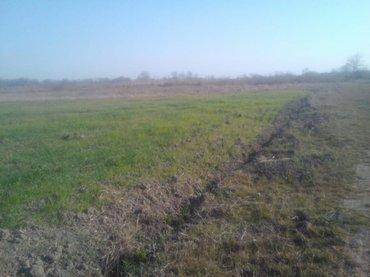 Недвижимость - Хачмаз: Продам 340 соток Для сельского хозяйства риелтор