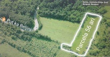Prodajem šumu površine 54 ara i obradivo zemljište 56 ari. - Belgrade