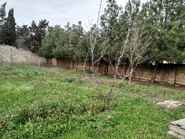 Bakı şəhərində Satış 4 sot vasitəçidən