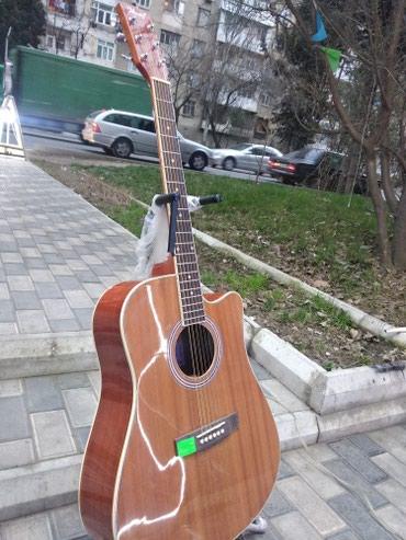 tibetan mastiff qiymeti - Azərbaycan: Gitara akustik Mastiff