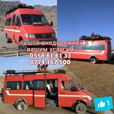 alfa romeo spider 18 mt в Кыргызстан: | Международные перевозки, Региональные перевозки Бус | 18 мест