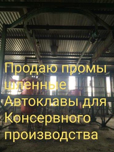 Продаю промышленные автоклавы для в Бишкек