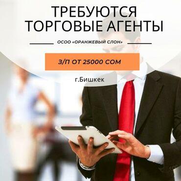 элевит 2 цена бишкек в Кыргызстан: Торговый агент. Без транспорта. 1-2 года опыта. Полный рабочий день