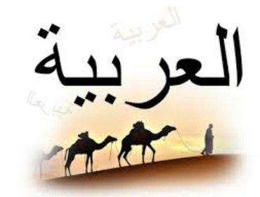 Переводчик арабского языка со стажем 3 года. Фатима 0558 222240 в Бишкек