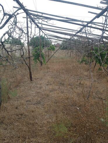 mawdaga - Azərbaycan: Satış 6 sot Tikinti mülkiyyətçidən
