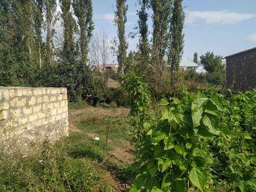 Продам - Азербайджан: Продам 12 соток Для бизнеса от собственника