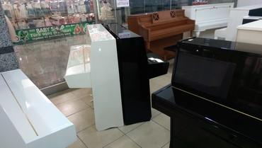 Pianino - Hissə-hissə ödəmək mümkündür. в Bakı