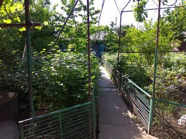 Недвижимость - Кызыл-Кия: 800 кв. м, 6 комнат