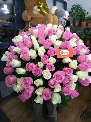 101 роза Кения по оптовым ценам розы от в Бишкек