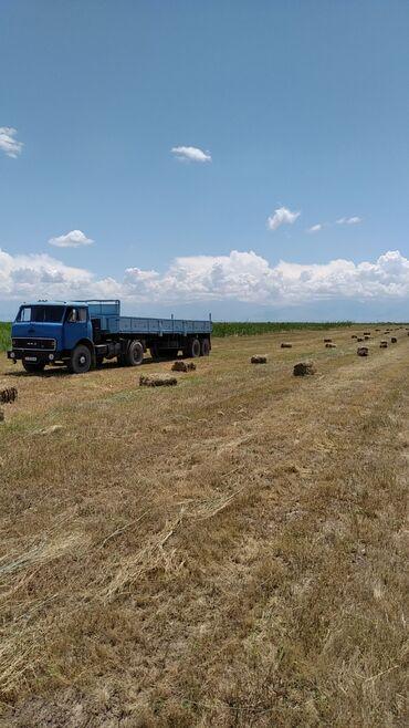 Авто услуги - Кара-Балта: Услуги МАЗ полуприцеп