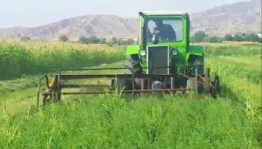 Культиватор-в-аренду-бишкек - Кыргызстан: Продается трактор и жатка Есть обмен, Находится в Джалал-Абад