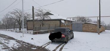 Недвижимость - Гусар: Продам 50 соток Для сельского хозяйства от собственника
