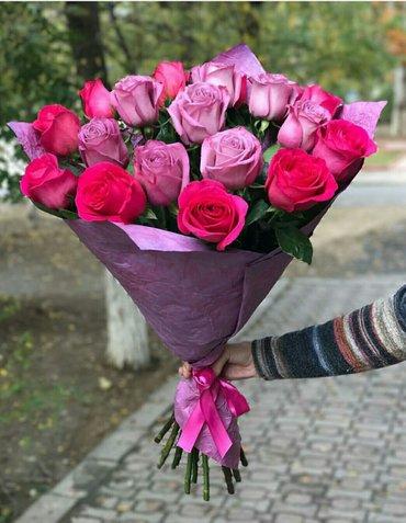 Роза голландская, розы, букеты для любимой. в Бишкек