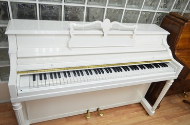 Pianino - Almanya istehsalı professional akustik pianoMüxtəlif marka