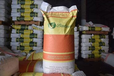Семена и уличные растения в Кыргызстан: Семена кукурузы Будан