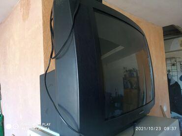 Отдам телевизор за очень хороший и красивый и большой горшочный цветок