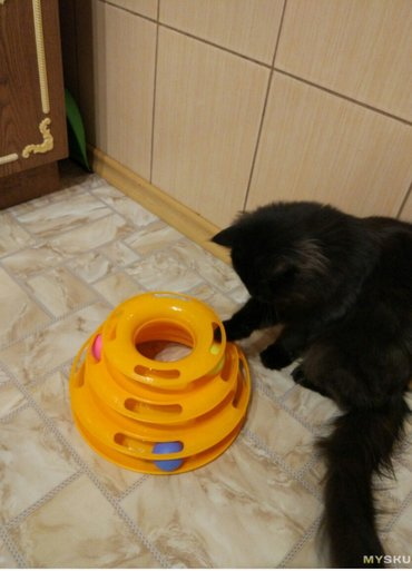 Игрушки для кошек.большой выбор в Бишкек