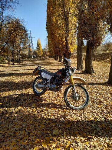 Модель Suzuki Djebel 200 - японская версия.•Тип: мотоциклаэндуро•Год