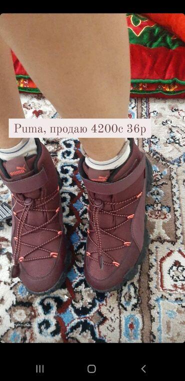 Продаю,новые puma оригинал со штатов. Мне оказались малы,больше на