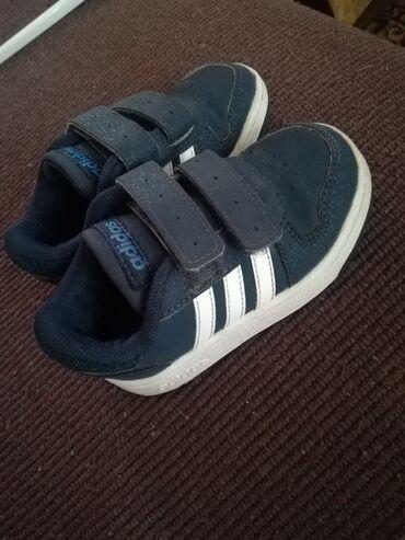 Adidas patike - Srbija: Patike za decaka adidas. 23 broj. Kao nove. Malo nosene