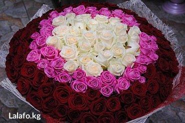 Розы по самым низким ценам в Бишкеке. в Бишкек