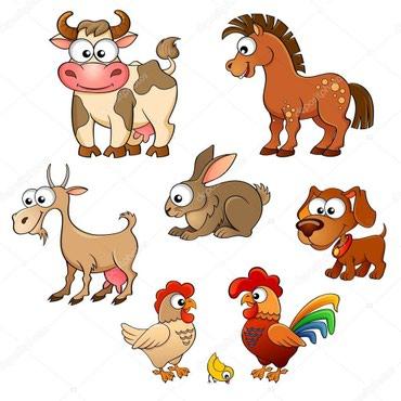 Купля продажа домашних животных! в Лебединовка