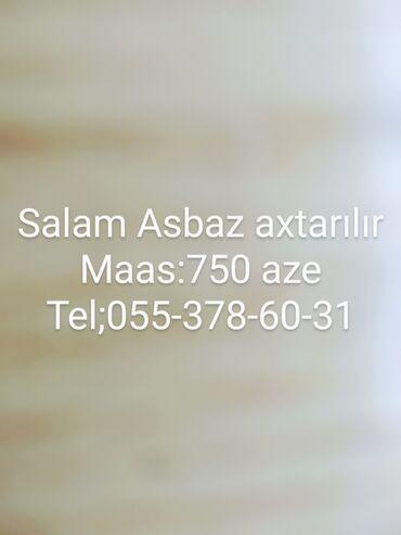 6 elan   İŞ: İT, komputerlər, əlaqə