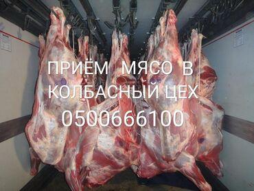 В колбасный цех, принимаем: коров, быков, лошадей,в любом виде, а
