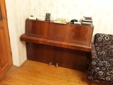 Piano kurslari bakida - Азербайджан: Piano / Pianino