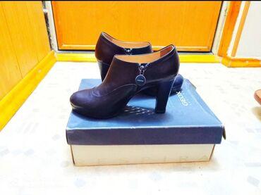 Женская обувь - Кыргызстан: Ботильоны Geox натур.кожа
