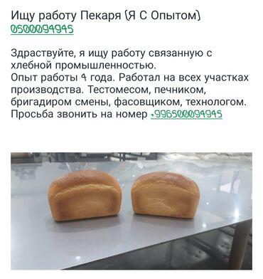 тесто каталка в Кыргызстан: Повар Пекарь. 3-5 лет опыта