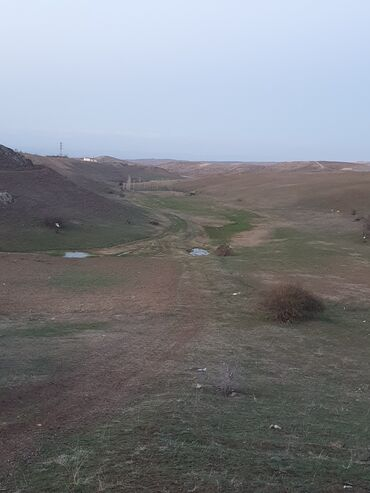 qubada torpaq satilir 2020 - Azərbaycan: Torpaq sahələrinin satışı sot