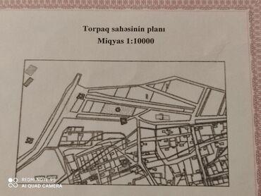 Daşınmaz əmlak Limanda: Satış 6 sot Kənd təsərrüfatı mülkiyyətçidən